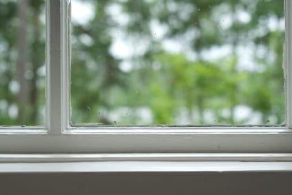 Windows & Doors Inspection