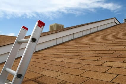 Roof & Attic Inspection
